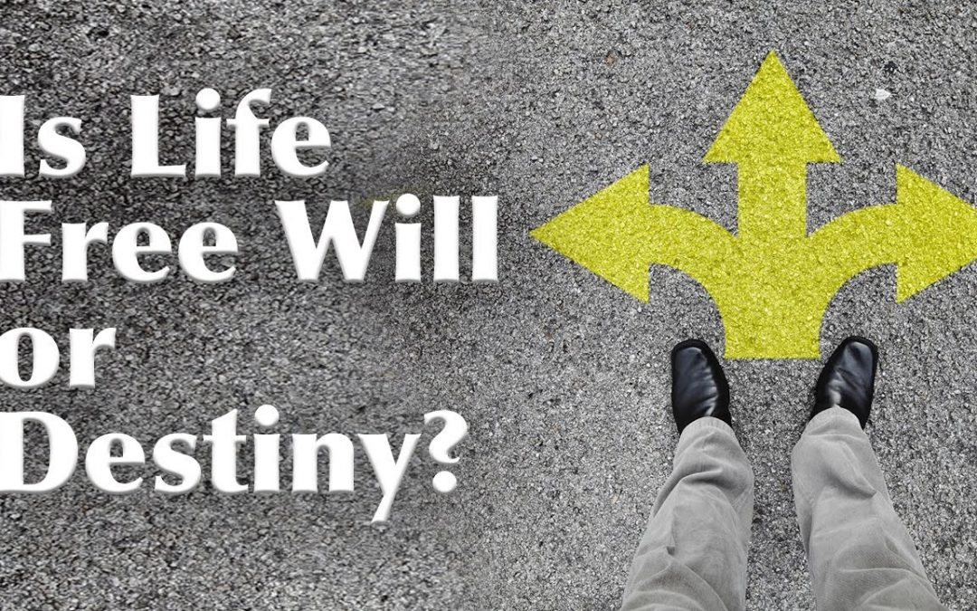 If everything is a play of Destiny, then what is Freewill?